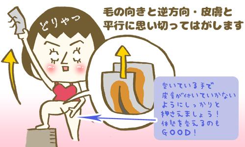 colum22_hagasu005